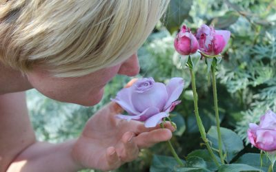 Slow down… and smell the roses!